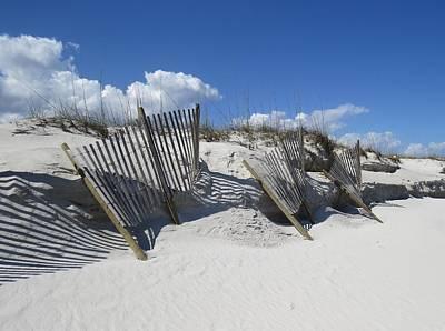 Photograph - Three Wind Screens by Ellen Meakin
