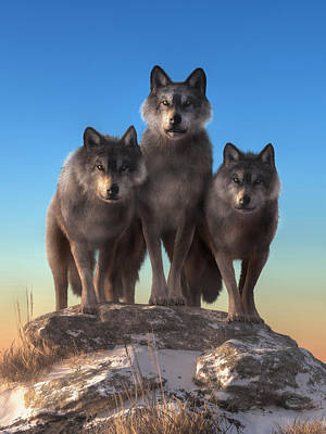 Digital Art - Three Wolves Watching You by Daniel Eskridge