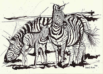 Three Zebra Black Ink Art Print by Morne Fourie