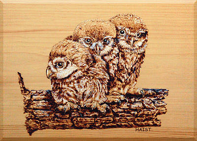 Pyrography - Three's Company by Ron Haist