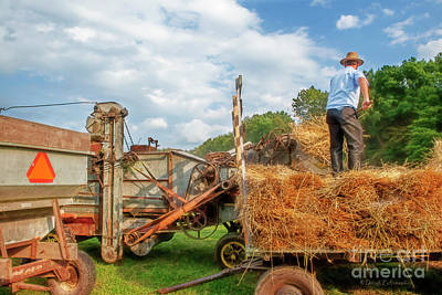 Photograph - Threshing by David Arment