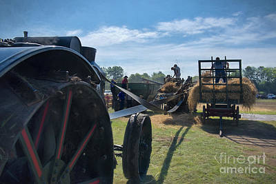 Amish Photograph - Threshing Grain by David Arment