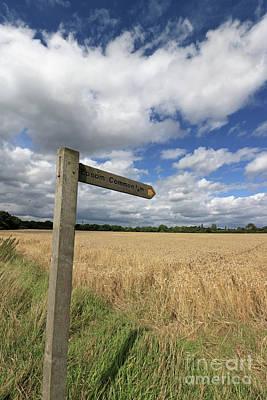 Photograph - Through English Countryside by Julia Gavin