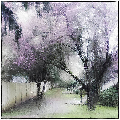 Photograph - Through My Window by Lynn Wohlers