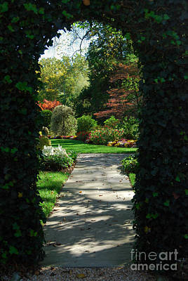 Photograph - Through The Archway by Eva Kaufman