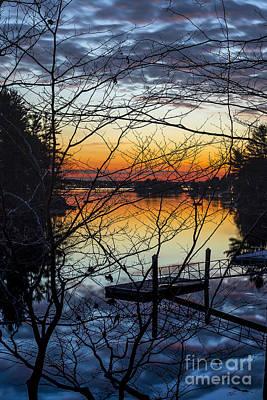 Chauncey Photograph - Through The Branches by Tony Baldasaro