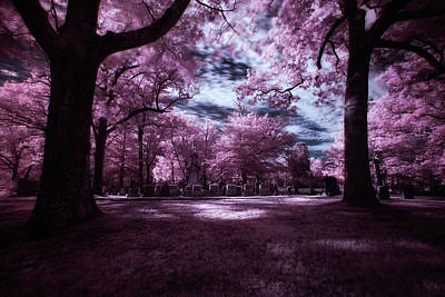 Photograph - Through The Cemetery Trees by John Hoey