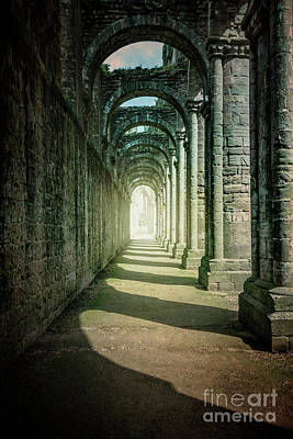 Photograph - Through The Colonnade by Evelina Kremsdorf