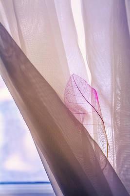 Through The Curtain Art Print