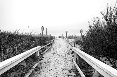 Photograph - Through The Dunes At Beach Haven by John Rizzuto
