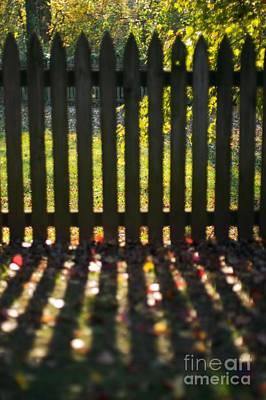 Through The Fence Art Print by Hideaki Sakurai