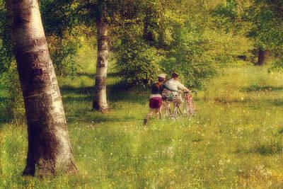 Ethereal - Through the Meadow by Joann Vitali