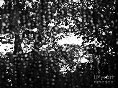 Photograph - Through The Pinholes 2 by Sarah Loft