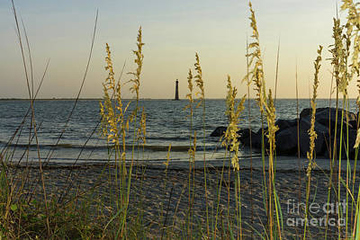 Photograph - Through The Sea Oats by Jennifer White