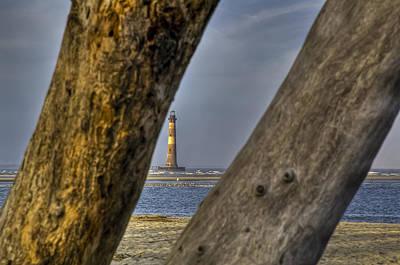 Morris Island Lighthouse Photograph - Through The Trees by Drew Castelhano