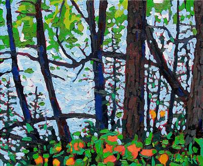 Ipap Painting - Through The Trees by Phil Chadwick