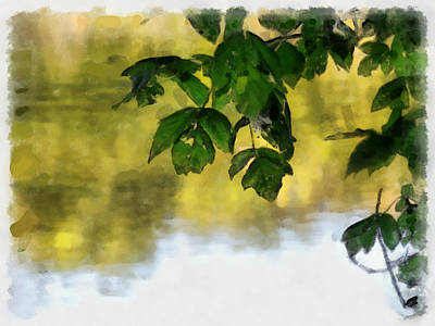 Canoe Digital Art - Through The Trees by Teresa Henry