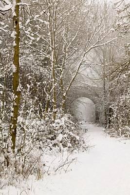 Through The Trees Through The Snow Art Print