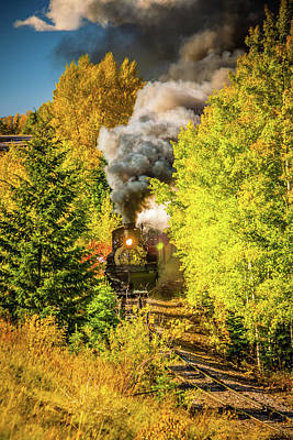 Narrow Gauge Engine Photograph - Through The Trees by Tom Weisbrook