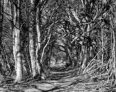 Through The Tunnel Bw 16x20 Art Print