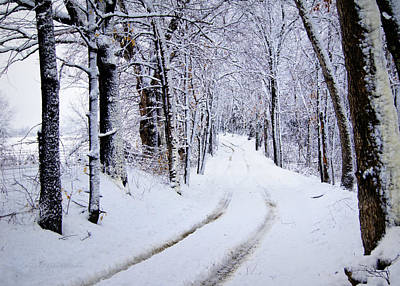 Snowy Roads Photograph - Through The Woods by Cricket Hackmann