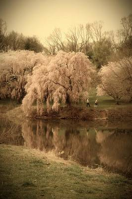 Photograph - Through The Years - Holmdel Park by Angie Tirado