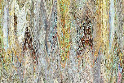 Photograph - Through Tiny Cracks In The Boardwalk by Danica Radman