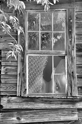 Photograph - Thru The Window by Jan Amiss Photography