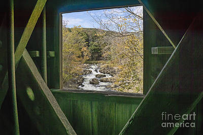 Photograph - Thru The Window by Scott Wood