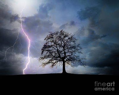 Photograph - Thunder And Lightning by Edmund Nagele