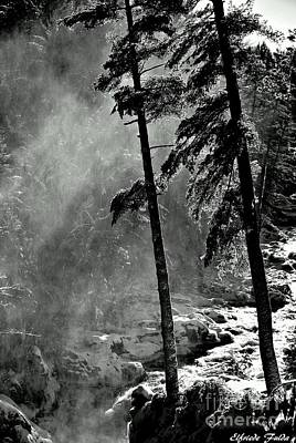 Photograph - Thunder by Elfriede Fulda
