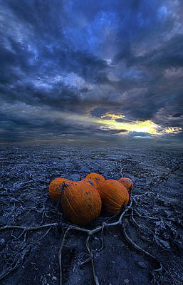 Photograph - Thus Begins November by Phil Koch