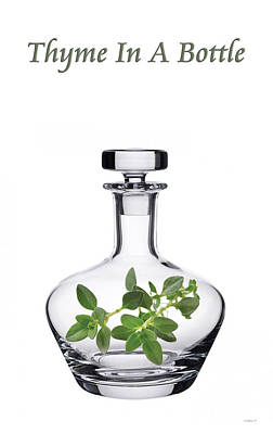 Digitally Manipulated Mixed Media - Thyme In A Bottle by Brian Wallace
