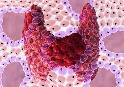 Thyroid Follicles Art Print by David Mack