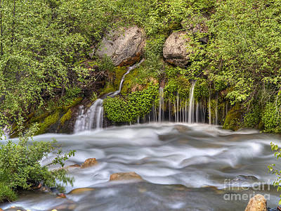 Photograph - Tibble Falls by Spencer Baugh
