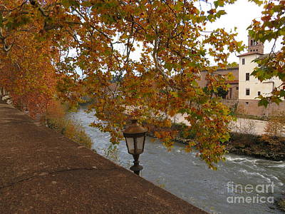Photograph - Tiber River In Autumn by Laurie Morgan