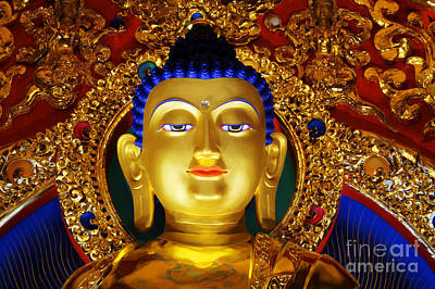 Photograph - Tibetan Buddha 1 by Bob Christopher