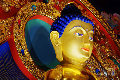 Photograph - Tibetan Buddha 6 by Bob Christopher