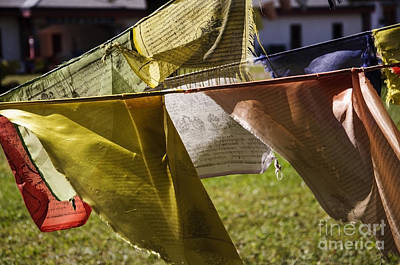 Photograph - Tibetan Prayer Flags by Debra Fedchin
