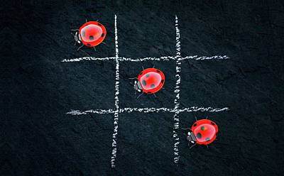 Photograph - Tic Tac Toe Red Colorful Ladybug Art by Wall Art Prints