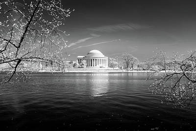 Photograph - Tidal Basin Jefferson Memorial by Paul Seymour
