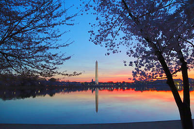 Photograph - Tidal Basin by Mitch Cat