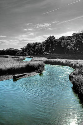 Tidal Marsh Art Print by Drew Castelhano