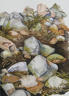 Tidal Pool Art Print by Helen Shideler