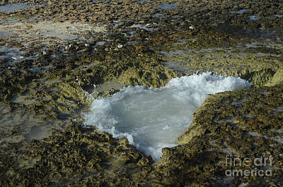 Photograph - Tidal Pool In The Lava Rock In Aruba by DejaVu Designs