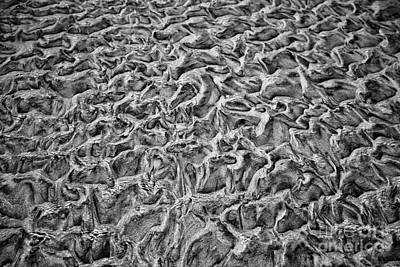 Photograph - Tidal Sand Patterns by Bruce Block