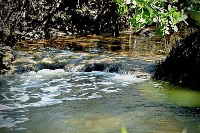 Photograph - Tidal Waterfall by Carol Bradley