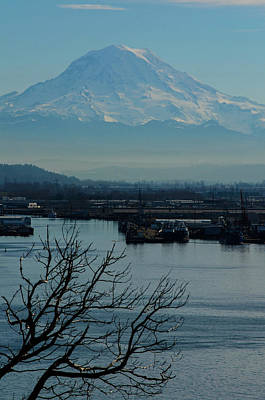 Photograph - Tide Flatts View Of Magestic Mount Rainier by Tikvah's Hope