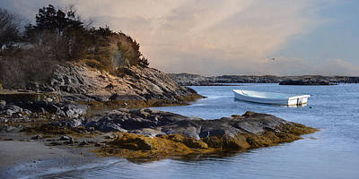 Photograph - Tide Line by Robin-Lee Vieira