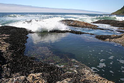 Photograph - Tide Pool Crash by Dylan Punke